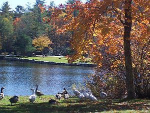 Climate of North Carolina - Harris Lake in Highlands, North Carolina during Fall.