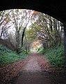 Heading towards Themelthorpe - geograph.org.uk - 1043971.jpg