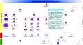 Hematopoiesis (human) diagram en.png