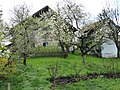 Henndorf (Berg 17-4).jpg