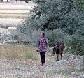 Herdswoman (31461692083).jpg