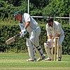Hertfordshire County Cricket Club v Berkshire County Cricket Club at Radlett, Herts, England 033.jpg