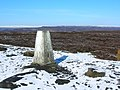 High Neb Trig Point, Stanage Edge - geograph.org.uk - 1081362.jpg