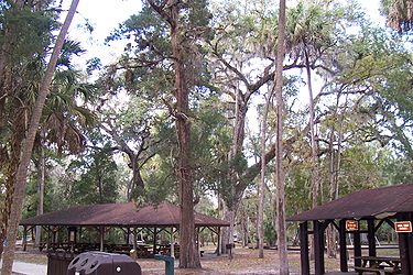 Hillsborough River State Park picnic area 2.jpg
