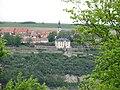 Hohe Lehde Tautenburg NSG 147 Bild 7.JPG