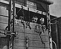 Holocaust Jews in a railway car.jpg