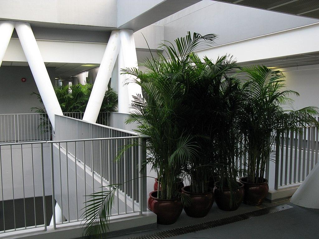 A corridor in a design school crappydesign for V column architecture