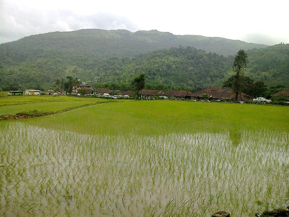 Horanadu, India. (7829087470)