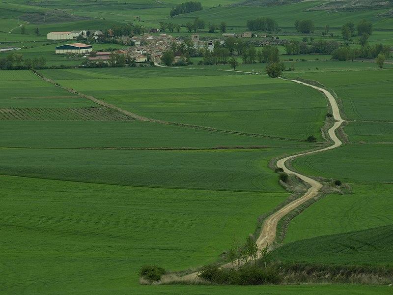 Vista de Hornillos del Camino