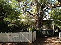 House in Hendra, Queensland 17.JPG