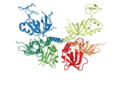 IL1O Replication protein A.png