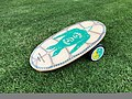 INDO BOARD - Sea Turtle balance board.jpg