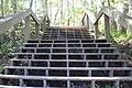 Ichetucknee Springs State Park stairs up from canoe launch.jpg