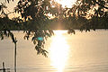 Ilha do Pavão (8403611591).jpg
