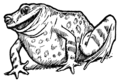 Illustration at page 71 in Europa's Fairy Book.png