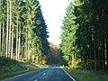 Im Dedenbacher Wald (L 83) LK Ahrweiler - geo.hlipp.de - 15513.jpg