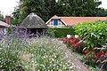 Im Schlossgarten Oldenburg (Oldb) IMG 0476.jpg