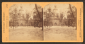 Independence Hall, from Robert N. Dennis collection of stereoscopic views 2.png