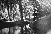 Fotografía de la Isla de Brownsea tomada antes del campamento