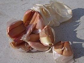 Italian garlic PDO.JPG