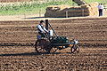 Ivel tractor - AO 385 at work in UK - 2009.JPG