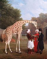 Jacques-Laurent Agasse - Nubian Giraffe - Google Art Project.jpg