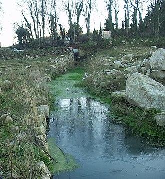 Carrickmines Castle - Image: January C'mines 2004 009c