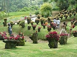Jardin de balata wikipedia for Jardin balata