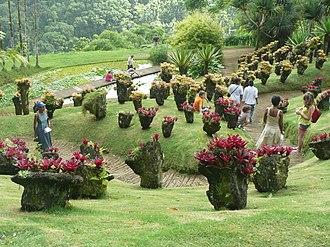 Jardin de Balata - Jardin de Balata