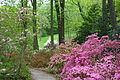 Jenkins Arboretum - DSC00570.JPG