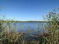 Jezioro Moszne.JPG