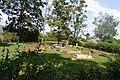 Jinja catholic commonwealth cemetery 2.jpg