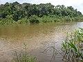 Jutaí - State of Amazonas, Brazil - panoramio (13).jpg