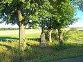 Kříž u rybníka východně od Veselé (Q66056953) 01.jpg