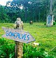 Kalevala, Gonçalves , MG, Brasil - panoramio.jpg