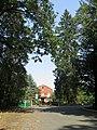 Kamyanka (Vyshhorod) forest range2.JPG