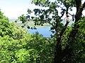 Kaniv Nature Reserve (May 2018) 72.jpg