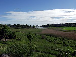 Kaupang, Vestfold view 22jun2005.jpg