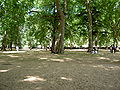 Kensington Gardens Of London Summer.jpg