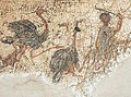 Killing ostriches on the Zliten mosaic.JPG