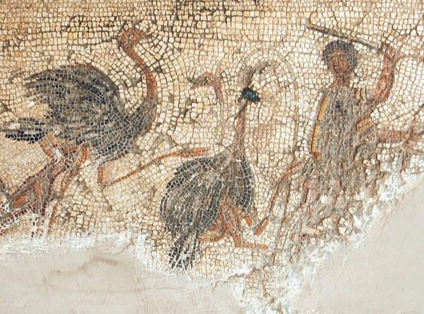 Killing ostriches on the Zliten mosaic