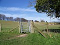 Kissing gate, Homington Down - geograph.org.uk - 747084.jpg