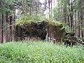 Klášterec nad Orlicí, R-S 56 (rok 2010; 01).jpg