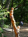 Kletterwald 106.jpg