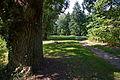 Klosterpark Wienhausen IMG 2074.jpg