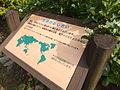 Kobe Municipal Arboretum in 2013-6-22 No,38.JPG