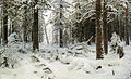Krajobraz leśnej zimy.jpg
