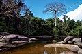 LANDSCAPE TAPANAHONY RIVER SURINAM AMAZONE SOUTH-AMERICA (32976539146).jpg