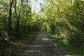La Châtelaine @ Walk along the Arve river (49049802852).jpg