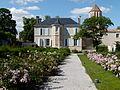 La roseraie dans le parc du Château de Surgères2.JPG